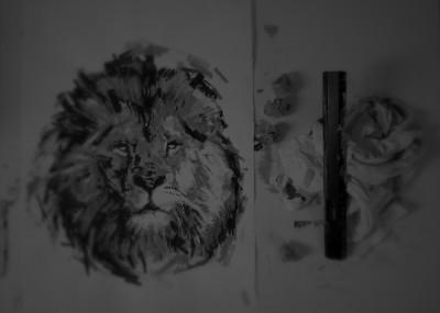 michael-stueber-2013-lion-sw